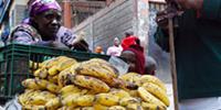 Bloggers address root of Kenyan food crisis