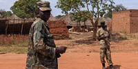 African nations unite against Ugandan rebel group