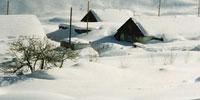 Tajikistan weathers energy, food shortages through winter