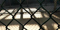 Young Guantanamo detainee returns home to Afghanistan